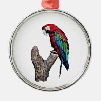コンゴウインコのオウムの鳥 メタルオーナメント
