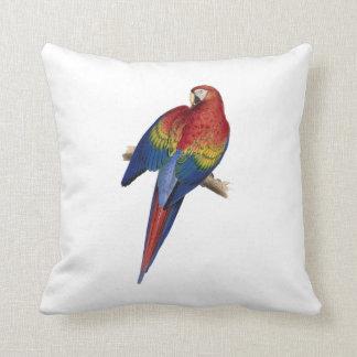 コンゴウインコの赤く黄色く青い鳥のオウム クッション