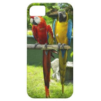 コンゴウインコの電話箱 iPhone SE/5/5s ケース