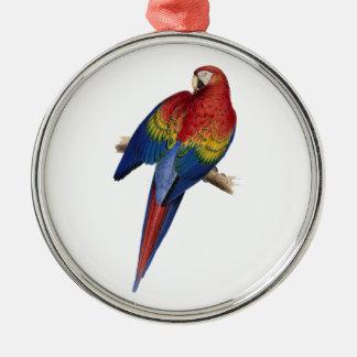 コンゴウインコの鳥のオウムのインコ メタルオーナメント