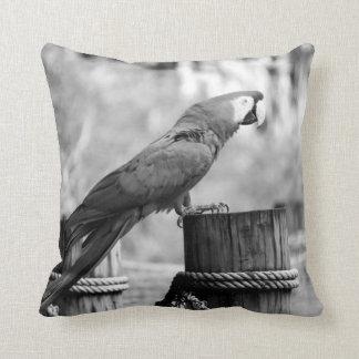 コンゴウインコの鳥bw動物のイメージ クッション