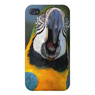 コンゴウインコのiPhoneカバー iPhone 4 Case