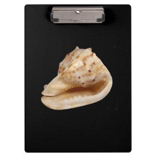 コンシュの貝のクリップボード クリップボード