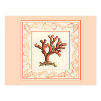 コンシュの貝のボーダーが付いている赤い珊瑚 ポストカード