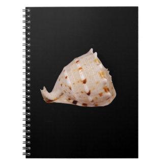 コンシュの貝の写真のノート ノートブック
