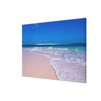コンシュ湾、猫の島のピンクの砂のビーチ、 キャンバスプリント