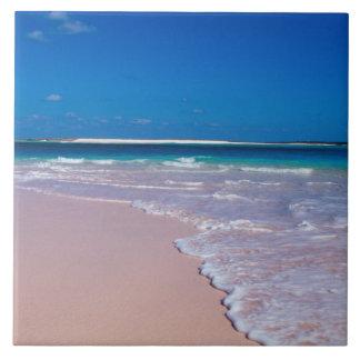 コンシュ湾、猫の島のピンクの砂のビーチ、 タイル