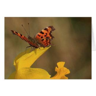 コンマの蝶およびラッパスイセン カード