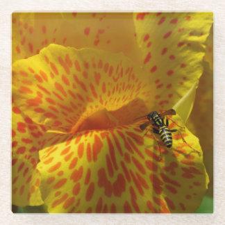 コースターのクローズアップの黄橙色の花のスズメバチ ガラスコースター
