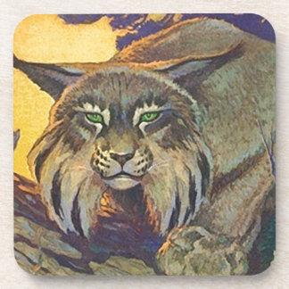 コースターのボブキャットの野生の野生の捕食動物の狩りの狩り コースター