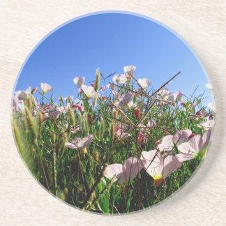 コースター-野生の花 サンドストーンコースター