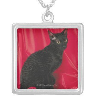 コーニッシュのレックス猫 シルバープレートネックレス