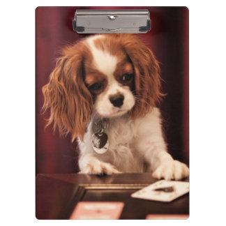 コーヒーテーブルのカードが付いている子犬の演劇 クリップボード