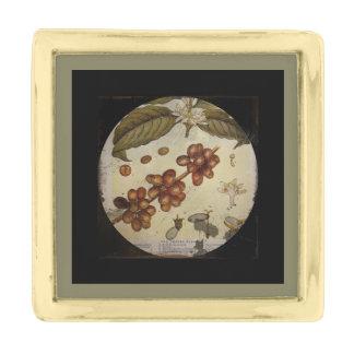コーヒー植物の植物のスケッチ ゴールド ラペルピン