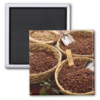 コーヒー豆 マグネット