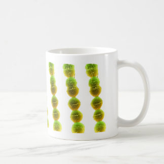 コーヒー・マグ-連鎖球菌(白の緑) コーヒーマグカップ