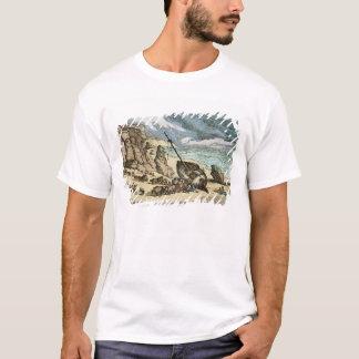 コーンウォールの北岸の大破の除去、f tシャツ