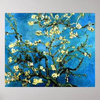 ゴッホのアーモンド木の花ポスター ポスター