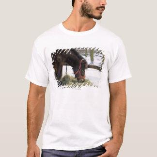 ゴトランドからの最初に原産の馬 Tシャツ