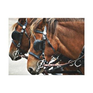 ゴトランドの子馬 キャンバスプリント