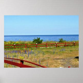 ゴトランドの島のスウェーデンの景色のバルト海の花 ポスター
