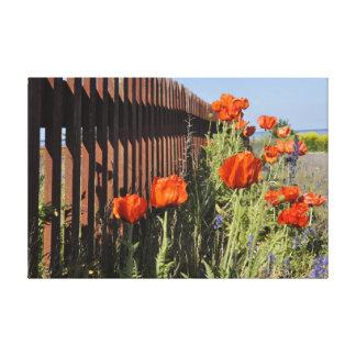 ゴトランドの島のスウェーデンの野生花のケシの塀 キャンバスプリント