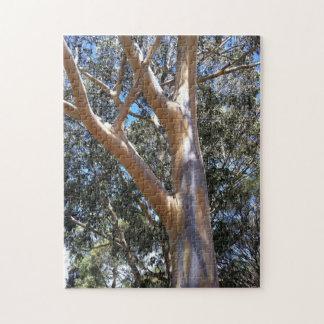 ゴムの木のパズル ジグソーパズル