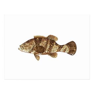 ゴリアテのハタの釣魚の海のベクトルイラストレーション ポストカード