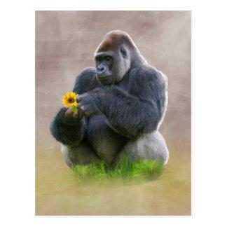 ゴリラおよび黄色いデイジー ポストカード