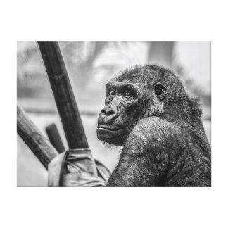 ゴリラ-白黒写真 キャンバスプリント