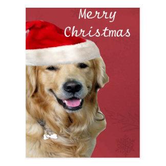 ゴールデン・リトリーバーのメリークリスマス ポストカード