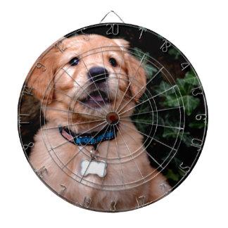 ゴールデン・リトリーバーの子犬 ダーツボード