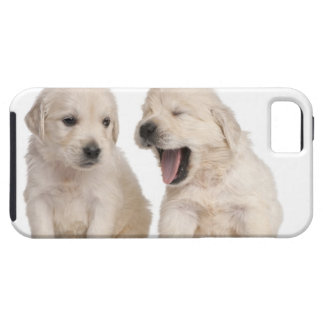 ゴールデン・リトリーバーの子犬(4週古い) iPhone 5 タフケース