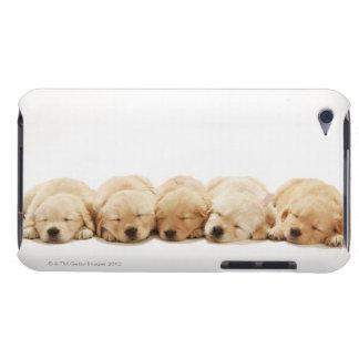 ゴールデン・リトリーバーの子犬 Case-Mate iPod TOUCH ケース