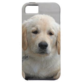 ゴールデン・リトリーバーの小犬のかわいく美しい写真 iPhone 5 タフケース