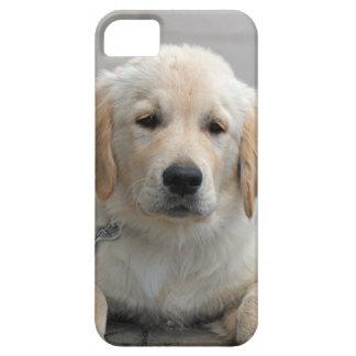 ゴールデン・リトリーバーの小犬のかわいく美しい写真 iPhone 5 Case-Mate ケース