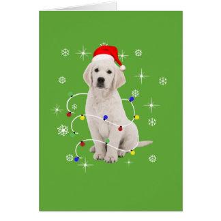 ゴールデン・リトリーバーの小犬の休日のクリスマス カード