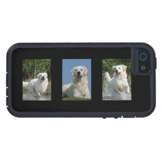 ゴールデン・リトリーバーの愛犬家の写真のiphone 5の場合 iPhone 5 Case-Mate ケース