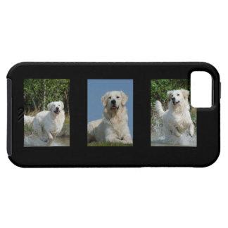 ゴールデン・リトリーバーの愛犬家の写真のiphone 5の場合 iPhone 5 cover