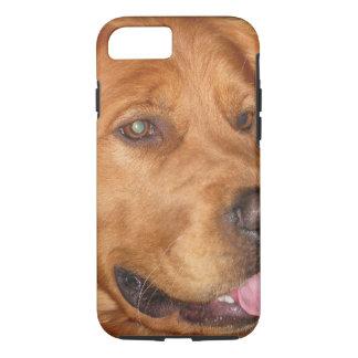 ゴールデン・リトリーバーの電話箱 iPhone 7ケース