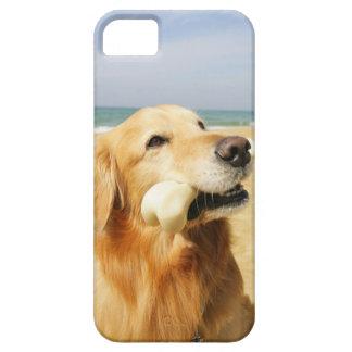 ゴールデン・リトリーバーの食べ物の骨 iPhone SE/5/5s ケース