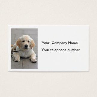 ゴールデン・リトリーバー犬のかわいい写真の名刺 名刺