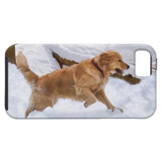 ゴールデン・リトリーバー犬の穹窖のiPhone 5の場合 iPhone 5 ケース