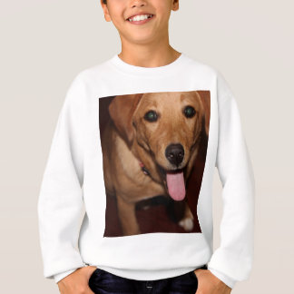 ゴールデン・リトリーバー犬#5 スウェットシャツ
