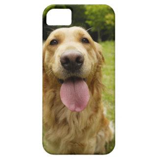 ゴールデン・リトリーバー4 iPhone SE/5/5s ケース
