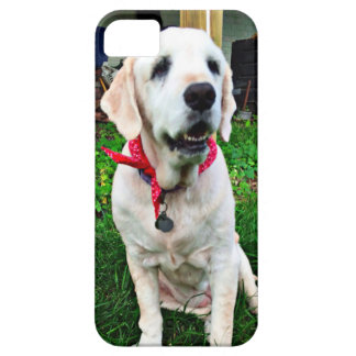 ゴールデン・リトリーバー Case-Mate iPhone 5 ケース