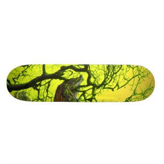 サイケデリックな板 カスタムスケートボード