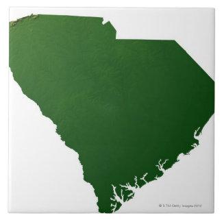 サウスカロライナの地図 タイル