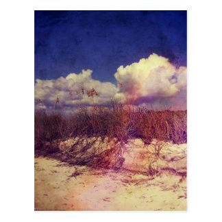 サウスカロライナの砂丘 ポストカード