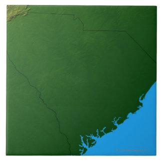 サウスカロライナ2の地図 タイル